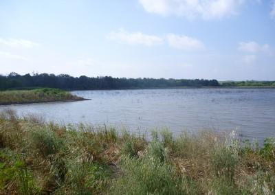 Plum Creek Mitigation Plan
