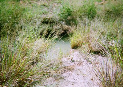 East Mountain Creek Interceptor